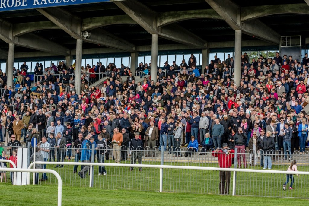Crowd-Pic-McHale-Day-02-7-15
