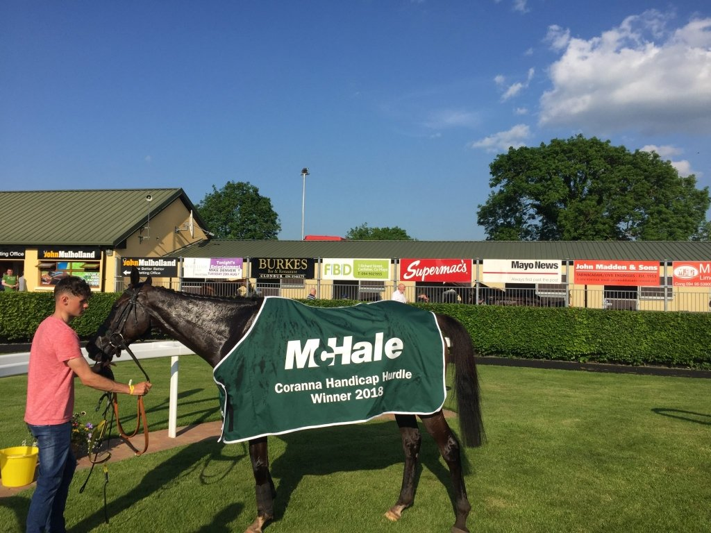 McHale Coranna Handicap Hurdle Winner – Art of Security